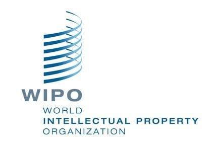 Madrid Protocol Concerning the International Registration of Marks